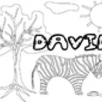 Activités sur le prénom David