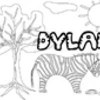 Activités sur le prénom Dylan