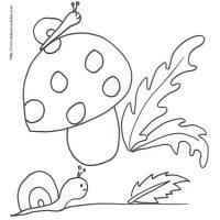 dessin escargots et champignon