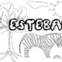 Activités sur le prénom Esteban
