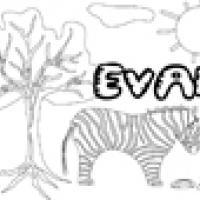 Activités sur le prénom Evan