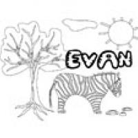 Evan, coloriages Evan