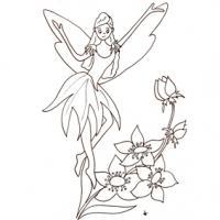 Petite fée sur les fleurs
