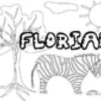 Activités sur le prénom Florian