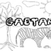 Activités sur le prénom Gaetan