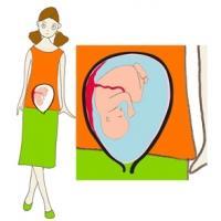 Le septième mois de grossesse