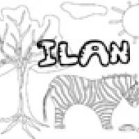 Activités sur le prénom Ilan