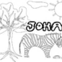 Activités sur le prénom Johan