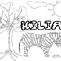 Activités sur le prénom Kilian