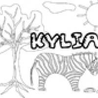 Activités sur le prénom Kylian