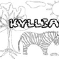 Activités sur le prénom Kyllian