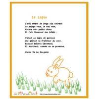 Poésies sur le lapin