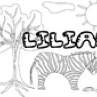 Activités sur le prénom Lilian