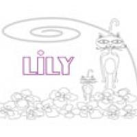 Lily, coloriages Lily