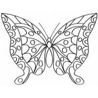 Coloriages Sur Le Monde Des Papillons Tete A Modeler