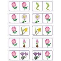 Jeu de dominos des fleurs à imprimer