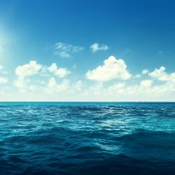 ocean - mot du glossaire Tête à modeler. Définition et activités associées au mot ocean.