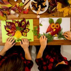 Votre enfant adorent ramasser les feuilles tombées en automne ? Aidez-le réaliser un collage avec les feuilles d'automne qu'il a ramassé. Dessinez le début du dessinavec un gros feutre et montrez-lui comment coller ses belles feuilles d'automne pour