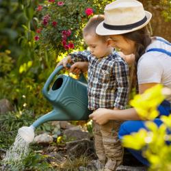 Économiser l'eau ne veut pas dire priver les plantes d'eau, mais choisir la meilleure heure pour arroser. Ce qui compte ce n'est pas la quantité d'eau que vous déversez ...