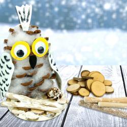 Dans cette activité manuelle d'hiver nous allons fabriquer une jolie chouette blanche avec une pomme de pin, de la feutrine et de la ouate de rembourrage !    Un bricolage créatif naturel et facile pour occuper les enfants cet hiver.