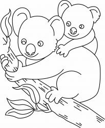 Koala 01 - motif à imprimer