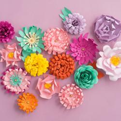 Bouquet de fleurs pots en plastiques