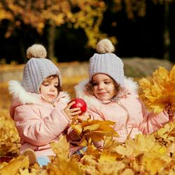 Activités,bricolages et informations pour mieux connaître et comprendre l'automne et les saisons. Des feuilles qui tombent aux décorations d'halloween en passant par les couronnes plus de 500 activités vous sont proposées sur le thème de l'automne. copie