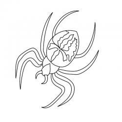 Coloriage araignée : vous cherchez un coloriage d'araignée à imprimer gratuitement ? Voici notre effroyable collection de coloriages d'araignées