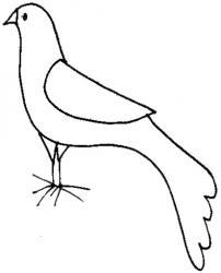 coloriage d'une colombe de Noël