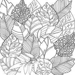 Voici un coloriage de feuilles d'arbre à imprimer gratuitement. Un dessin de feuilles à imprimer pour tous les petits amoureux des arbres et de la nature. Page 07