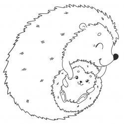 Voici un coloriage de hérisson à imprimer gratuitement. Un dessin de hérisson à imprimer pour tous les petits amoureux des animaux. Page 01