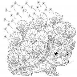 Voici un coloriage de hérisson à imprimer gratuitement. Un dessin de hérisson à imprimer pour tous les petits amoureux des animaux. Page 10