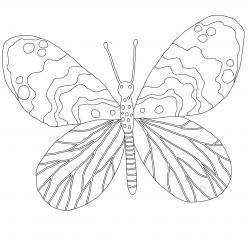 Coloriage papillon : voici un dessin à imprimer avec un joli papillon. Un coloriage à imprimer sur le thème des papillons - Page 1