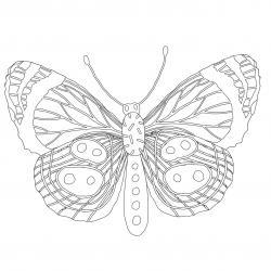 Coloriage papillon : voici un dessin à imprimer avec un joli papillon. Un coloriage à imprimer sur le thème des papillons - Page 6