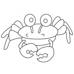Dessins pour le coloriage des coquillages, mollusques, crustacés, homard et autres animaux invertébrés de la mer.