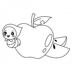 Série de dessins de fruits récoltés à l'automne  , des coloriages à imprimer