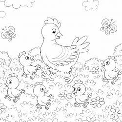 Dessins et coloriages sur les animaux de basse-cour comme les poules, canard, poussins, oies, lapins, coq ... Les dessins sont à colorier.