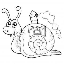Coloriages et dessins pour colorier les escargots et les mollusques de terre comme les limaces. Coloriages de gastéropodes.