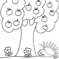 Dessins et coloriages sur les arbres, les feuilles,les champignons, les fruits d'automne ... Le coloriage est un bon moyen d'intéresser les enfants à la nature et à la saison d'automne