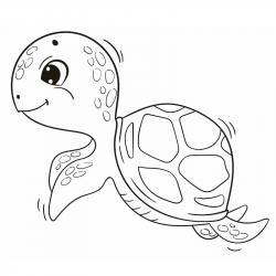 coloriages de tortues pour dessiner les mercredis et les week end. Dessins à imprimer