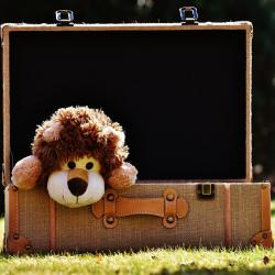 """Un jeu de devinette très amusant, """"dans ma valise"""" est un jeu qui fera travailler la mémoire des enfants ! Le but est de prononcer """"Dans ma valise il y a..."""" et de compléter la suite ! Et ainsi de suite ! Il faut donc bien mémoriser les phrases et les rép"""