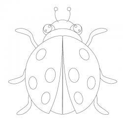 Dessin coccinelle : un coloriage de coccinelle à proposer aux enfants qui aiment ces petits insectes - Page 7