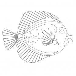Imprimer le poisson d'avril à découper et à colorier pour préparer les farces du premier avril ou pour réaliser des bricolages