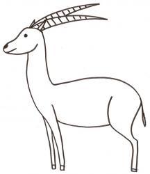 coloriage d'une antilope
