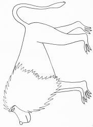 coloriage d'un babouin
