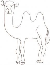 coloriage d'un chameau