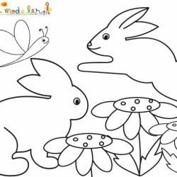 Coloriage de 2 lapins jouant dans les fleurs