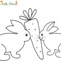 Deux lapins pour une carotte