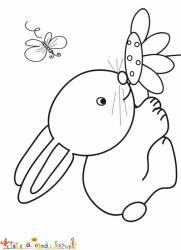 Bébé lapin respire une fleur