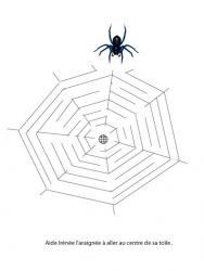 Labyrinthe toile d'araignée d'automne